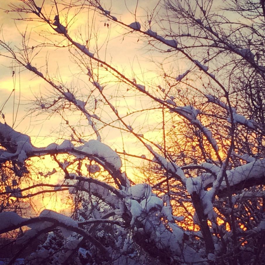 sunrisesnow